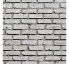 Old Brick Nevada